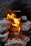 O homem construiu uma fogueira nas madeiras na natureza Sobreviva nas montanhas na floresta, cozinhando em uma bandeja do potenci fotografia de stock royalty free