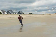 O homem corre afastado Grupo de pássaros da gaivota Imagens de Stock