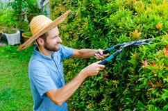 O homem corta arbustos Fotografia de Stock Royalty Free