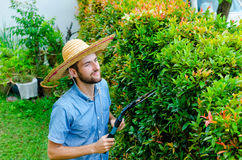 O homem corta arbustos Fotos de Stock