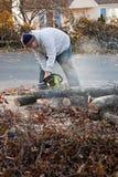 O homem corta os membros de árvore com uma serra de cadeia imagens de stock