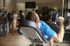O homem dá certo com pesos em um banco em um gym, vista traseira Fotos de Stock