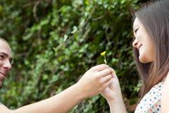 O homem dá a sua esposa uma flor imagem de stock