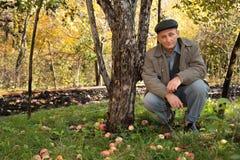 O homem de meia idade pensativo senta-se sob a maçã-árvore Fotos de Stock Royalty Free
