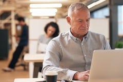 O homem de negócios maduro centrou-se sobre o trabalho em um escritório Imagem de Stock Royalty Free