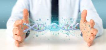O homem de negócios que guarda uns dados da rendição 3d codificou o ADN com o fi binário Fotos de Stock
