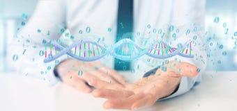 O homem de negócios que guarda uns dados da rendição 3d codificou o ADN com o fi binário Imagens de Stock