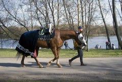 O homem de Reenactor e um cavalo em Kolomenskoye estacionam em Moscou fotos de stock