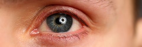 O homem deixou a olho colorido cinzento azul o close up extremo foto de stock