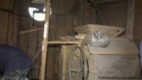 O homem derrama a grão de aveia colhida seca na máquina retro da peneiração com cubeta vídeos de arquivo
