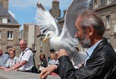 O homem e a gaivota Imagens de Stock
