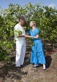 O homem e a mulher, par loving, fazem uma declaração do amor em uma plantação das laranjas, Cuba imagem de stock