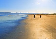 O homem e a mulher são fotografados pelo oceano Imagens de Stock