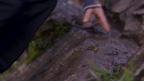 O homem escala uma rocha da saliência perto da floresta e os apertos guardam Atleta nas rochas na floresta, estilo de vida ativo vídeos de arquivo