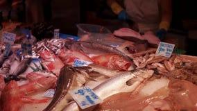 O homem está cortando peixes atrás de um contador com os peixes crus frescos em um mercado, video estoque