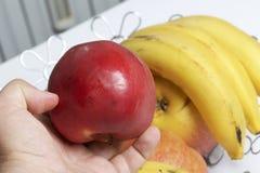 O homem está guardando uma maçã vermelha em sua mão Há uma cesta de fruto no fundo Diversas maçãs e bananas foto de stock royalty free