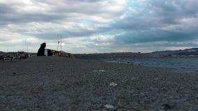 O homem está perto do beira-mar vídeos de arquivo