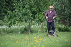 O homem está segando o gramado no verão Imagem de Stock Royalty Free