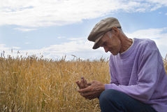 O homem idoso sobre o campo Fotos de Stock Royalty Free