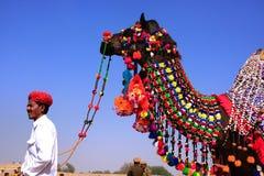 O homem indiano que está com o seu decorou o camelo no festival do deserto, Imagens de Stock Royalty Free