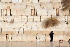 O homem judaico ortodoxo pray na parede ocidental Imagens de Stock