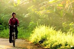 O homem monta a bicicleta na manhã através do raio de luz imagem de stock