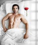 O homem na cama com levantou-se Fotografia de Stock