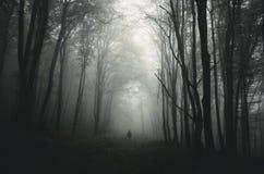 O homem na obscuridade assombrou a floresta com árvores gigantes Imagem de Stock Royalty Free