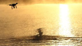 O homem nada a borboleta em um lago no por do sol no slo-mo O zangão acaba-se video estoque