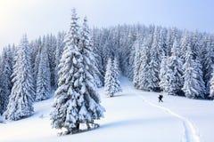 O homem no gramado nevado imagens de stock