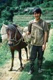 o homem novo do fazendeiro com seu cavalo em torno de sua família coloca foto de stock
