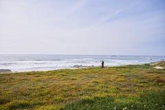 O homem olha o oceano da costa fotos de stock