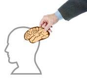 O homem põe um cérebro na cabeça humana Imagens de Stock