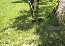 O homem que sega o campo de grama selvagem verde usando o ajustador do gramado da corda da segadeira ou da ferramenta elétrica do imagens de stock royalty free