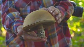 O homem realiza em suas mãos um grande cogumelo video estoque
