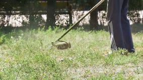 O homem sega a grama usando um Lawnmower portátil no movimento lento video estoque