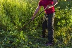 O homem sega a grama usando uma foice foto de stock royalty free
