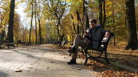 O homem senta-se em um banco e smartphone da utilização Parque do outono vídeos de arquivo