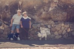 O homem superior e a mulher com dois pugs olham o sol Fotos de Stock