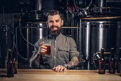 O homem Tattooed com barba e cabelo à moda guarda a pinta da cerveja do ofício que senta-se no contador da barra na cervejaria in imagem de stock