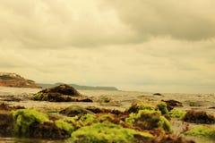O horizonte do mar fotos de stock