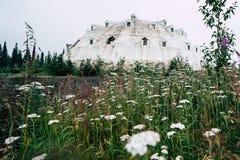O hotel abandonado famoso do iglu dos anos 70 senta-se ao longo de George Parks Highway Wildflowers no primeiro plano imagens de stock royalty free