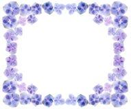 O Hydrangea floresce o frame ilustração do vetor