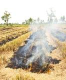 O incêndio queimava a palha. Fotos de Stock