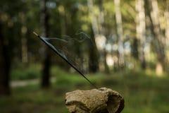 O incenso indiano iluminou a vara de fumo contra a textura borrada floresta fotografia de stock royalty free
