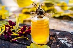O indicum de Combretum, óleo do ` s da trepadeira de Rangoon em uma garrafa de vidro na superfície de madeira rústica com ele o ` Foto de Stock