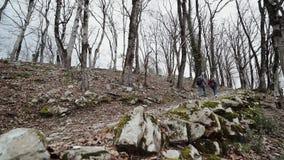 O indivíduo com uma menina que guarda as mãos vai acima do trajeto rochoso na floresta calva vídeos de arquivo