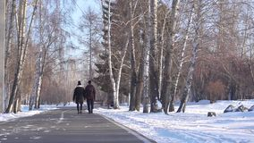 O indivíduo e a menina estão andando através do parque no inverno video estoque