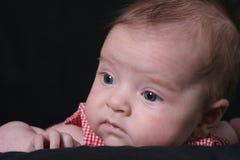 O infante olha afastado Foto de Stock Royalty Free