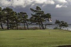 18o inteiro com árvores Foto de Stock Royalty Free